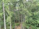2014 Lusen Bayerischer Wald_17